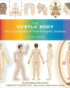 Image of the Encyclopedia of Your Subtle Bodies Energetic Anatomy